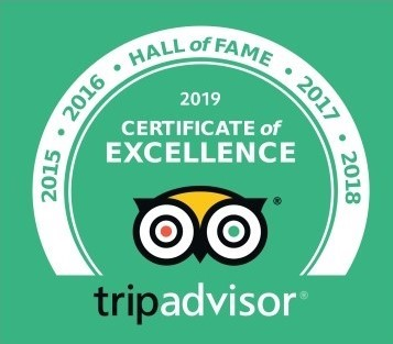 tripadvisor certificate of excellence + hall of fame badge, in green, issued 2019